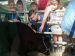 Farm Day at Bushnell Elementary School