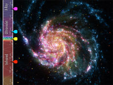 "<div class=""source""></div><div class=""image-desc"">   This image of the Pinwheel Galaxy (M101) combines images from four different telescopes. Red shows the cool dust in the galaxy, as revealed by infrared light. Yellow shows visible starlight. Cyan (blue) shows the hottest and youngest stars glowing brightly in ultraviolet light. And magenta (purple) shows incredibly hot matter emitting x-rays as it is being pulled into a black hole.        </div><div class=""buy-pic""><a href=""/photo_select/13647"">Buy this photo</a></div>"