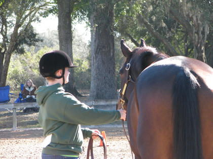 4-H hosted a horse clinic on Saturday and Sunday, Feb. 19 and 20th at the Sumter Equestrian Center in Bushnell. More than 30 club members participated in the clinic and competition. The following are images from that event.